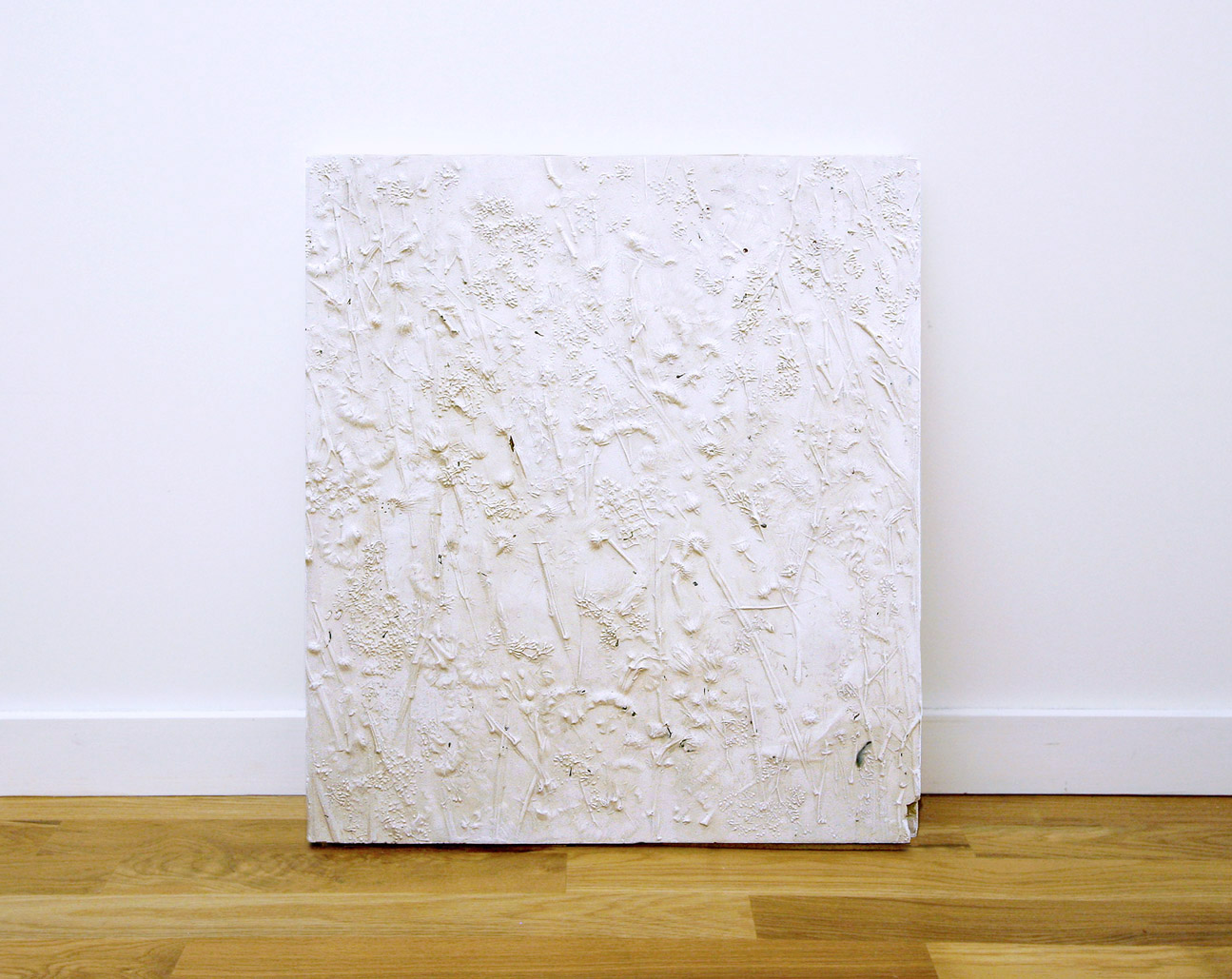 Garden (eucalyptus), plaster, 2016
