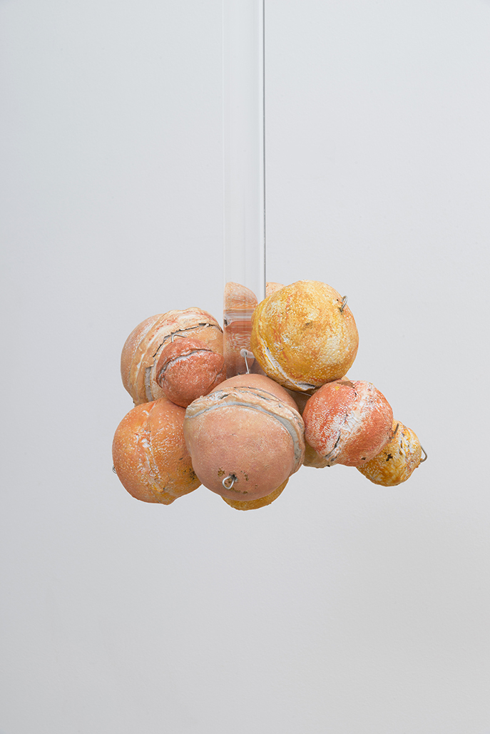 Untitled (Citrus Balls 6) Solid cast acrylic rod, various citrus fruit rinds, epoxy putty, oil pastel, stainless steel wire, and enamel; dimensions variable; 2018